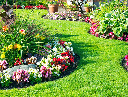 DIY Gardening จัดสวนสวยๆ ด้วยตัวเอง 🧑🏻🌾